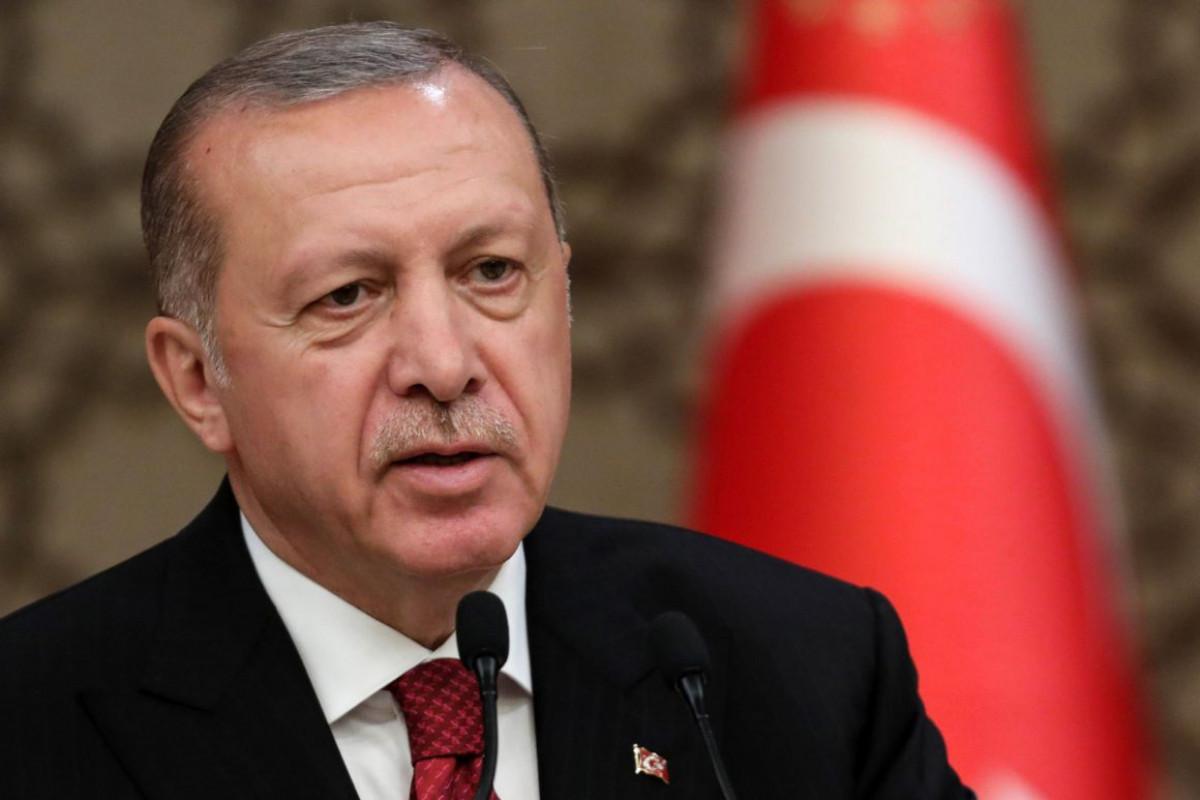 Эрдоган поблагодарил президента Азербайджана за поддержку в борьбе с лесными пожарами