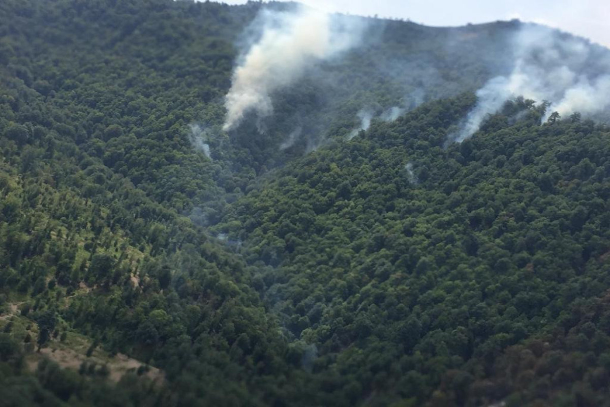 """Azerbaijani MES and MENR disseminated joint information regarding the fire in forest strip in Yardimli-<span class=""""red_color"""">VIDEO-<span class=""""red_color"""">PHOTO"""