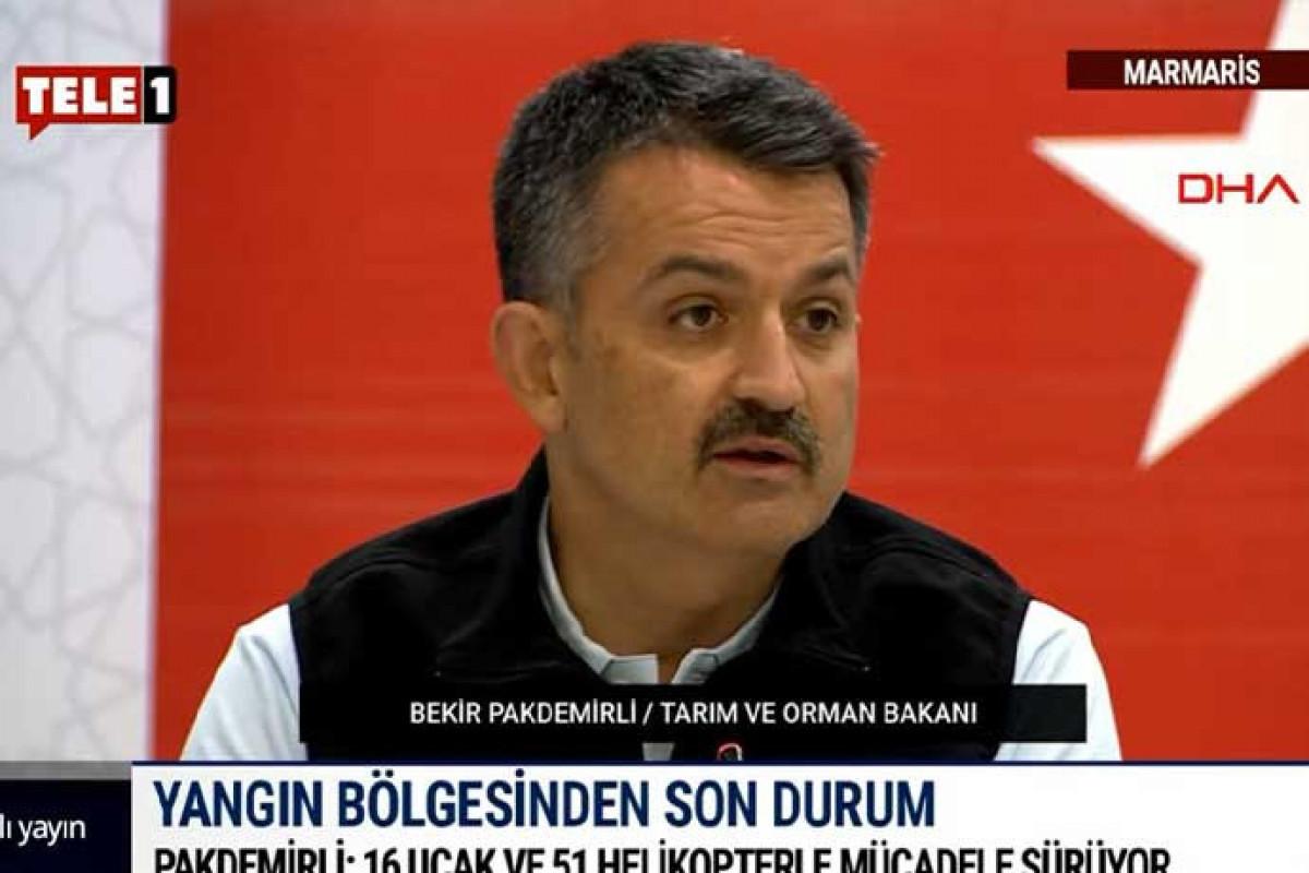 Бекир Пакдемирли: Из 163 пожаров в 38 провинциях Турции потушены 152
