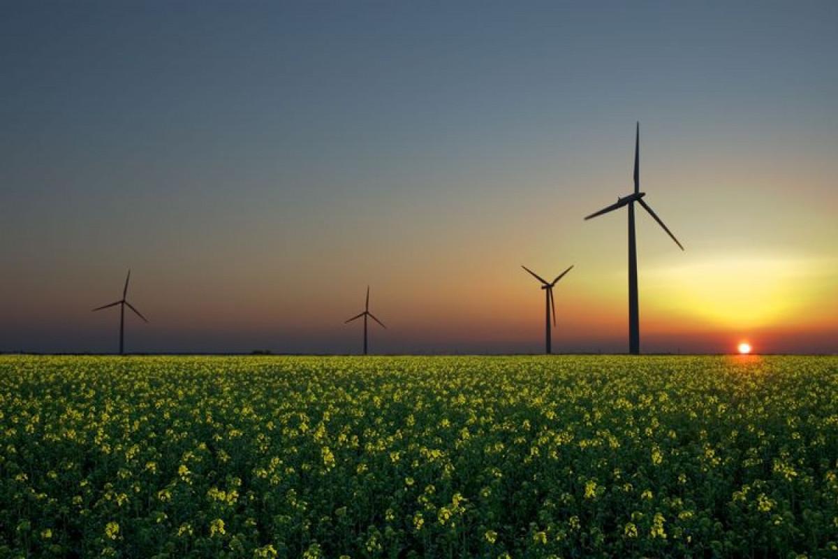Rusiya qlobal enerji keçidinə hazırlaşır