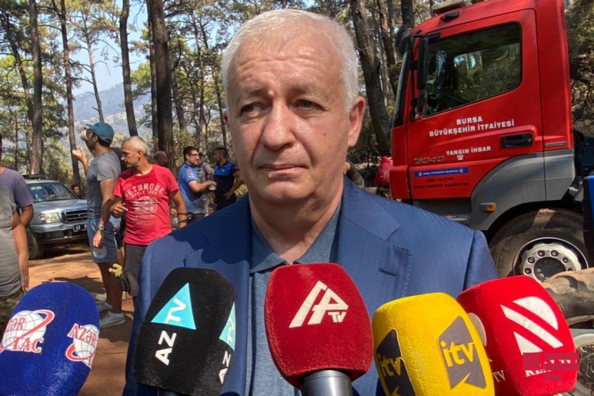 Замминистра: В настоящее время азербайджанские пожарные работают в Турции в 3 направлениях