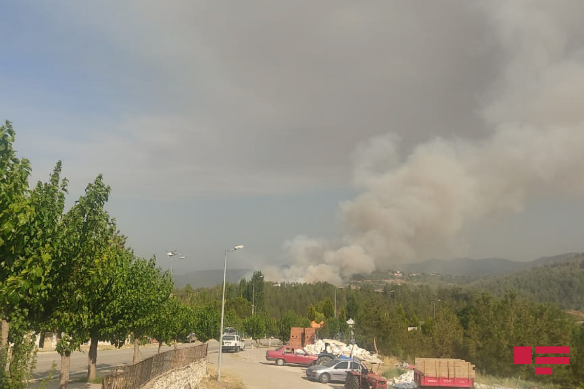 """Fires in Turkey continue-<span class=""""red_color"""">PHOTO-<span class=""""red_color"""">VIDEO"""