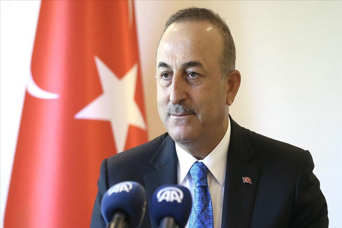 """Mevlut Cavusoglu: """"A new delegation from Azerbaijan will arrive tomorrow to extinguish fires in Turkey on the instructions of Mr. Ilham Aliyev"""""""