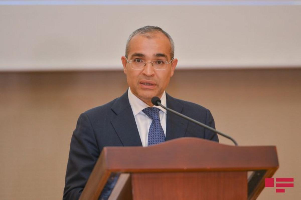 Микаил Джаббаров: За шесть месяцев число активных налогоплательщиков выросло на 3,9%