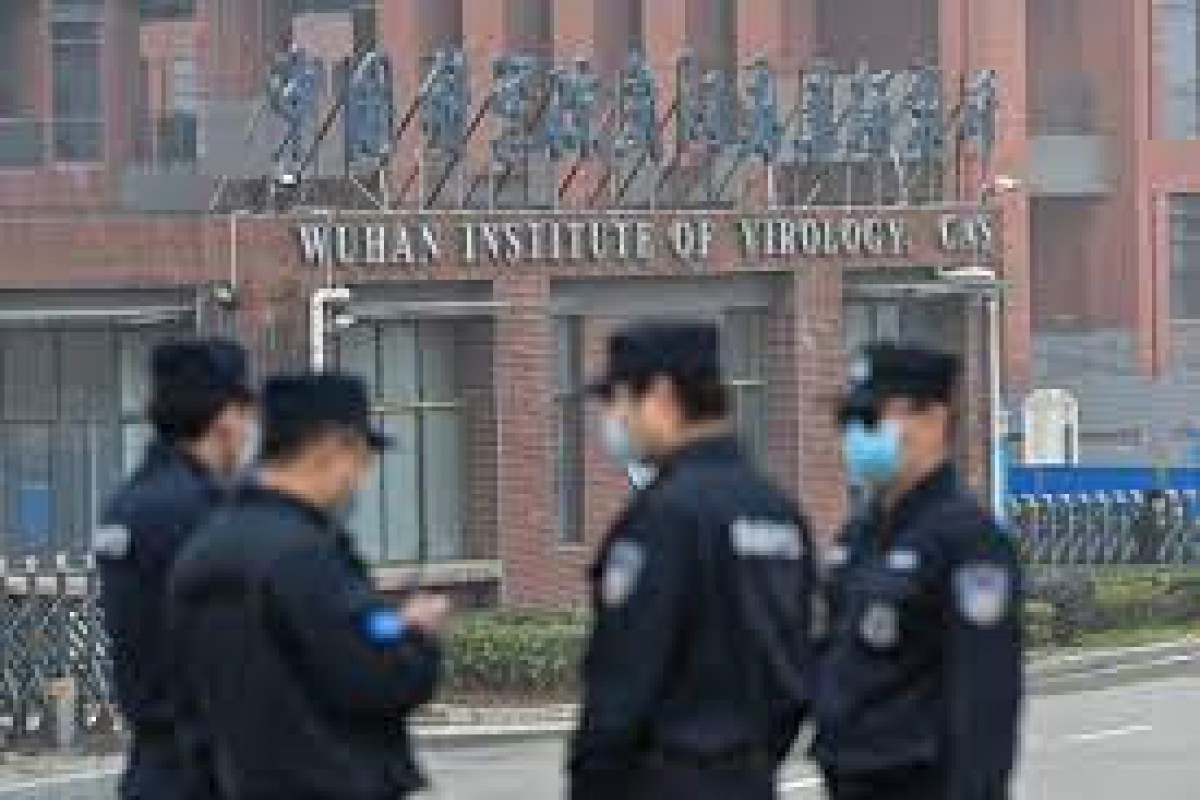 Wuhan lab leak theory not confirmed by House Foreign Affairs Committee