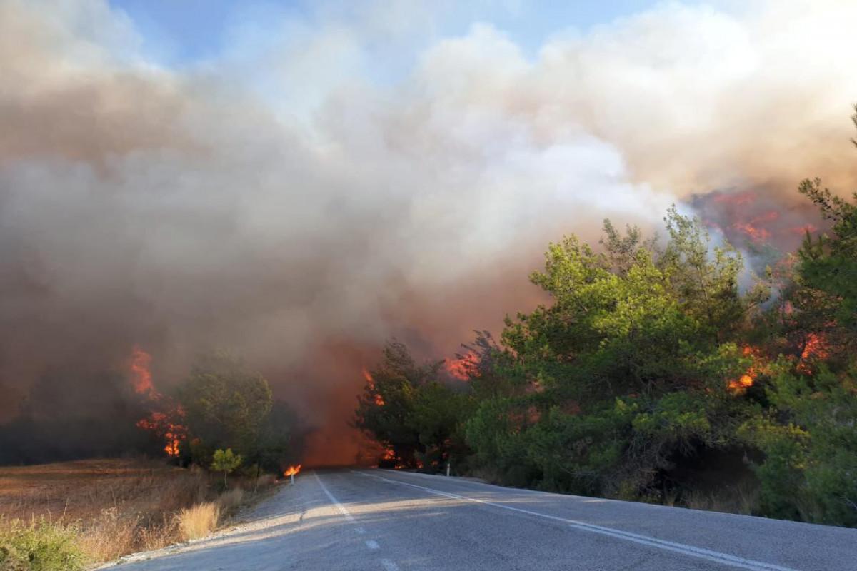 В Турции пожары продолжаются в 15 местах
