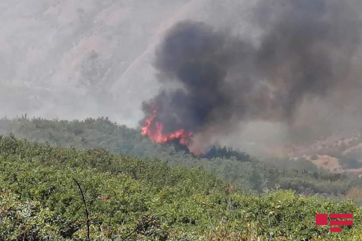 Ağsuda dağlıq ərazidə baş verən yanğının söndürülməsinə helikopter cəlb olunub- YENİLƏNİB  - FOTO  - VİDEO