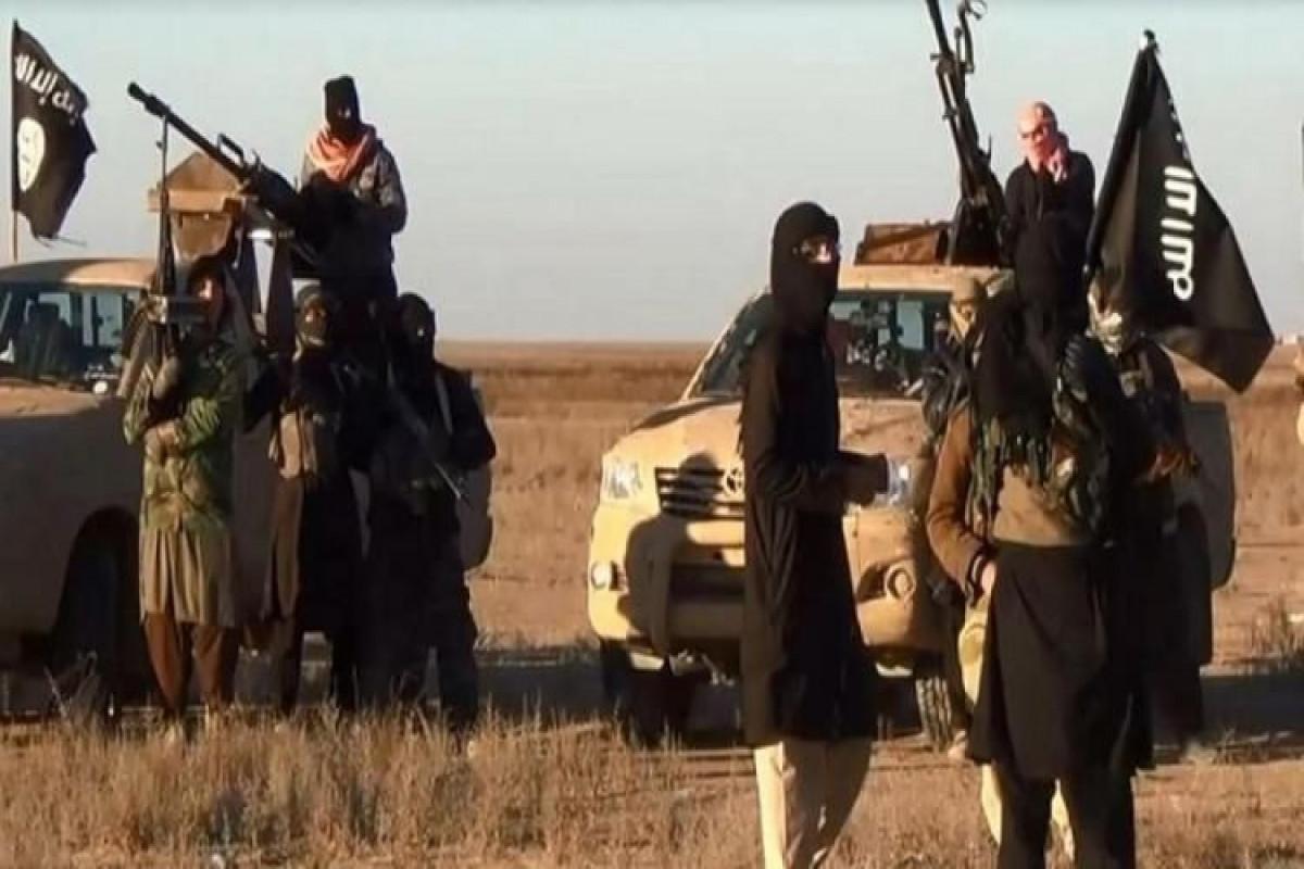 Gürcüstanda İŞİD-in 5 üzvü saxlanılıb