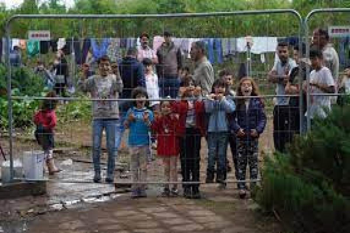 В Польше задержали 13 человек, разрушавших забор на границе с Беларусью