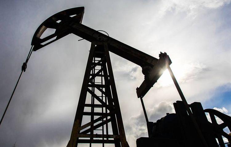 ОПЕК+ договорился о параметрах сокращения добычи на февраль и март
