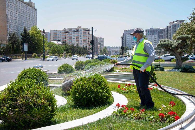 Bakı metrosunda yığılan qrunt suları yaşıllıqların suvarılması üçün istifadə olunacaq