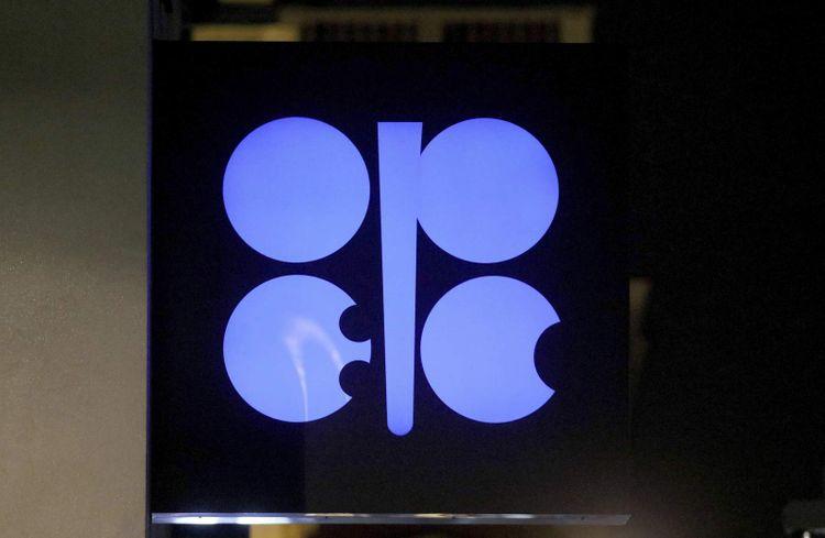 Qeyri-OPEC ölkələri maye karbohidrogenləri üzrə təklifi artıracaq
