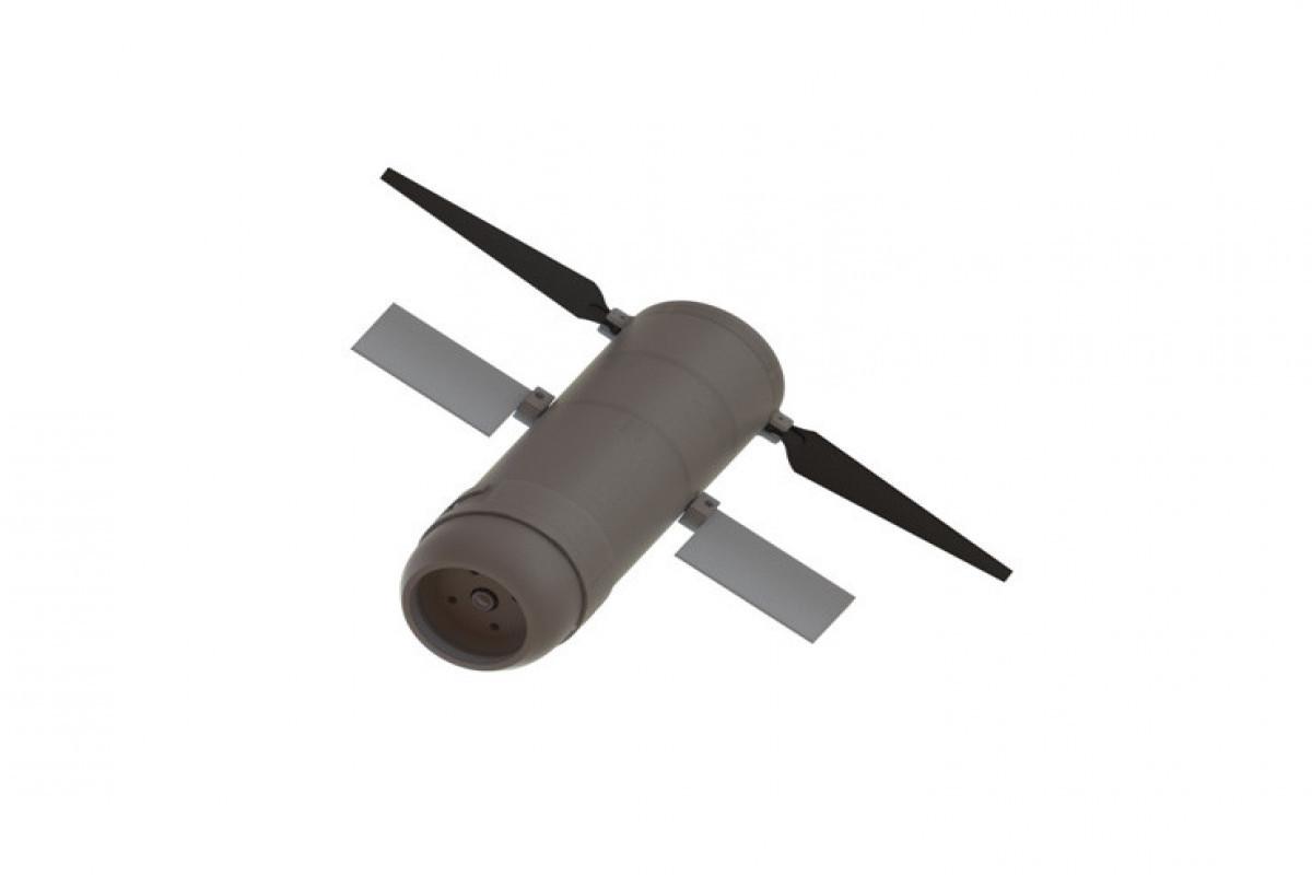 В Азербайджане создан БПЛА, который может быть использован в разведывательных целях и в качестве дрона-камикадзе