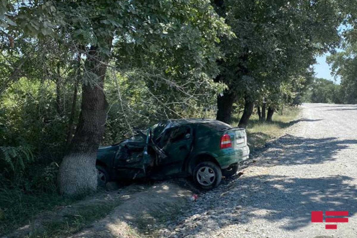 Şəkidə avtomobil ağaca çırpılıb, xəsarət alan var - FOTO
