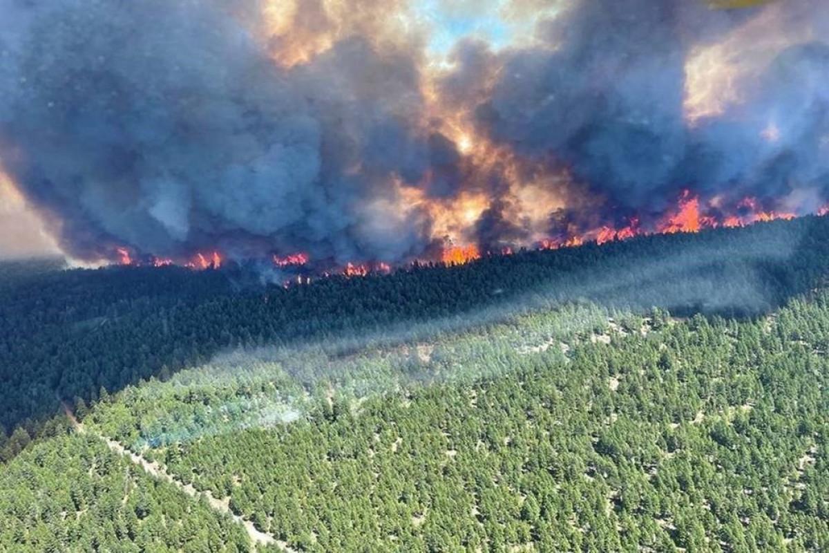Kanadanın qərbində meşə yanğınların sayı 180-ə çatıb
