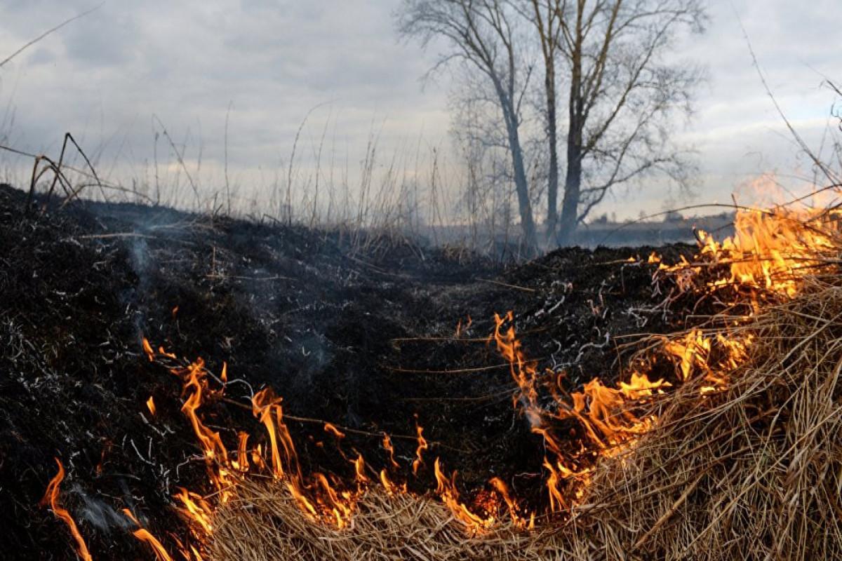 В Физули горит заминированная территория, к месту происшествия привлечен вертолет МЧС-ВИДЕО