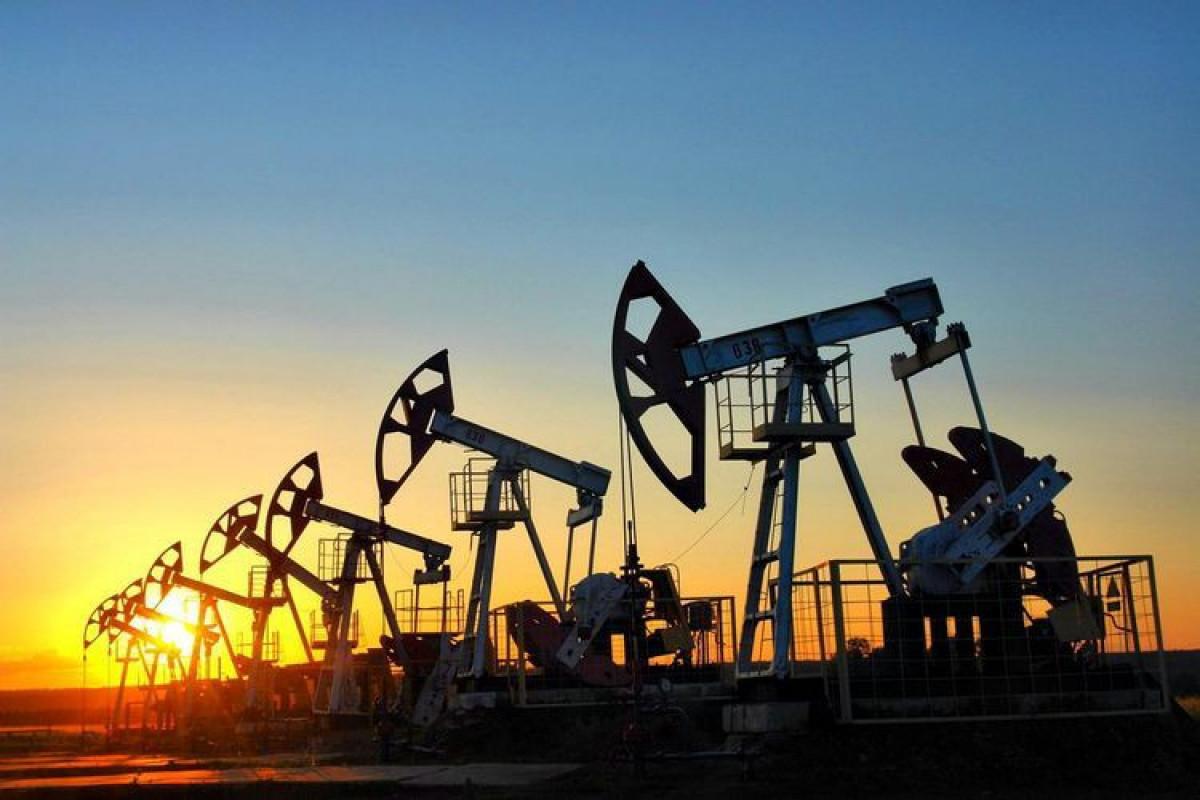 EIA OPEC-in builki neft hasilatı üzrə proqnozunu cüzi azaldıb
