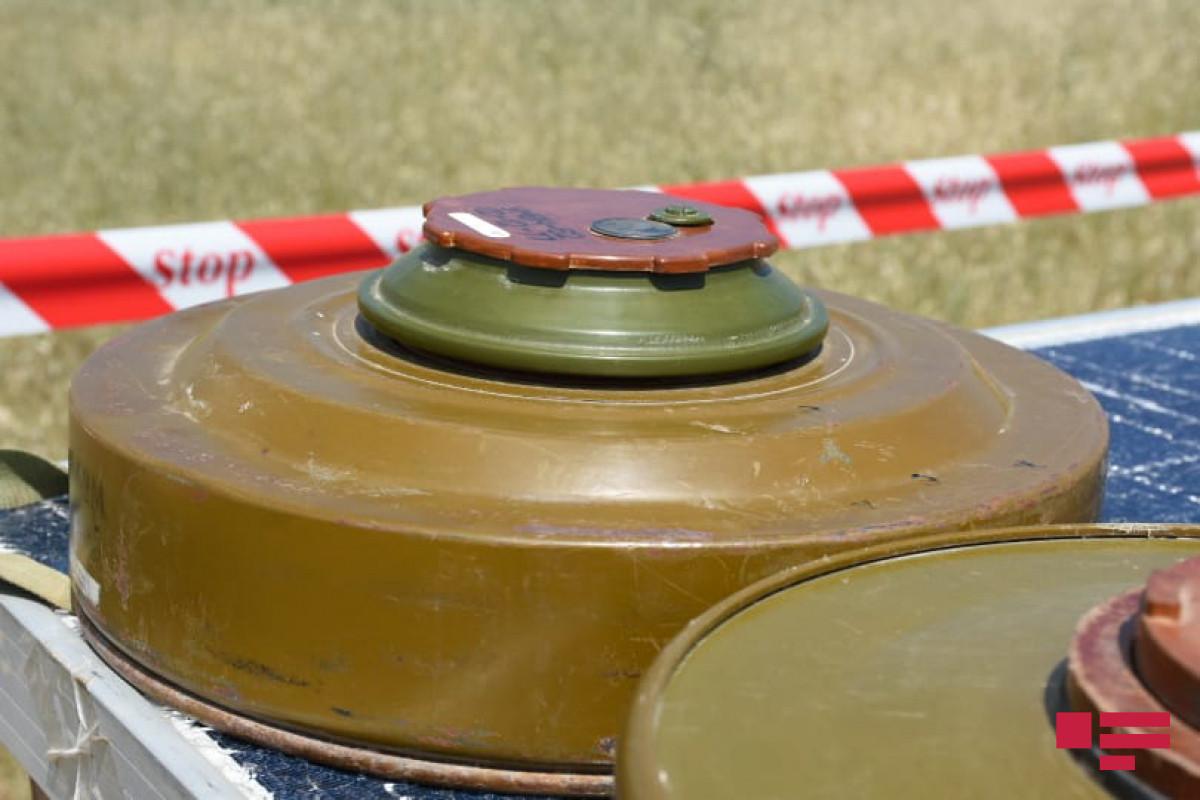По факту подрыва на мине двух человек в Физули возбуждено уголовное дело