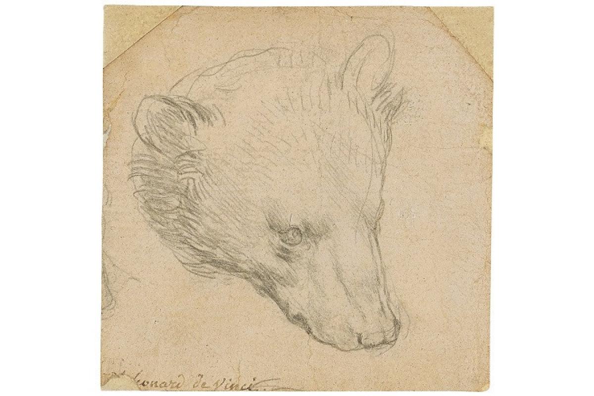 "Leonardo da Vinçinin çəkdiyi ""Ayı başı"" eskizi 12,2 mln. dollara satılıb"