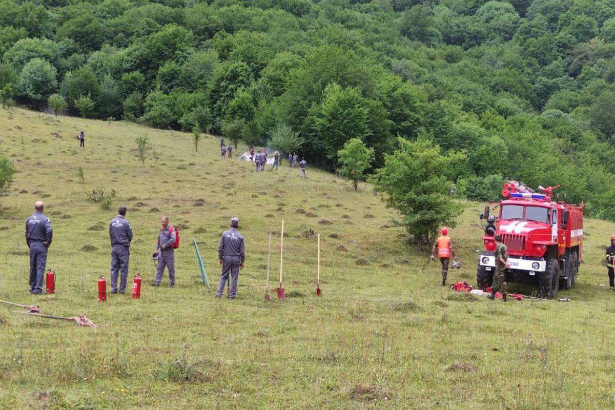 МЧС и МЭПР провели совместные учения по тушению лесных пожаров-ФОТО