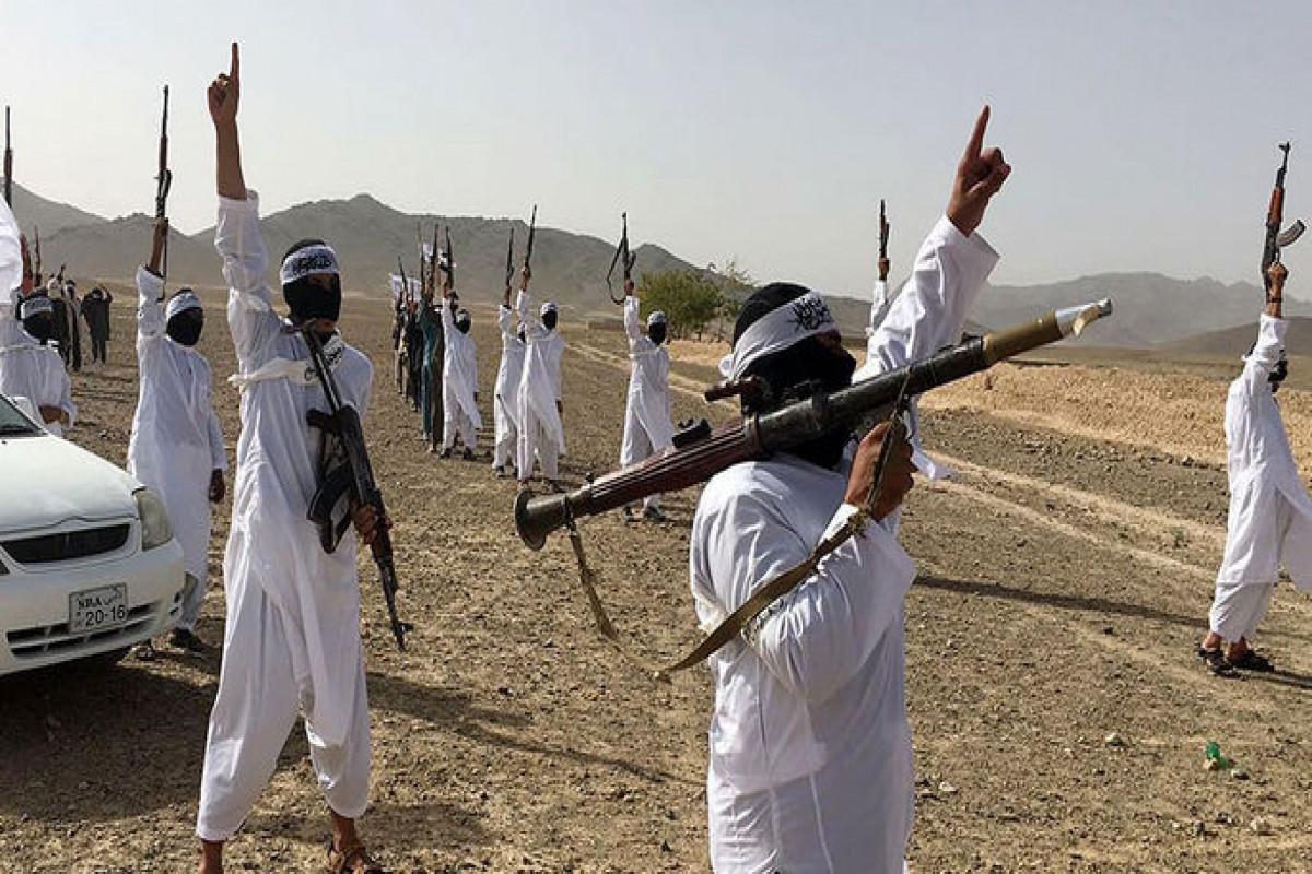 В США обеспокоились наступлением талибов в Афганистане