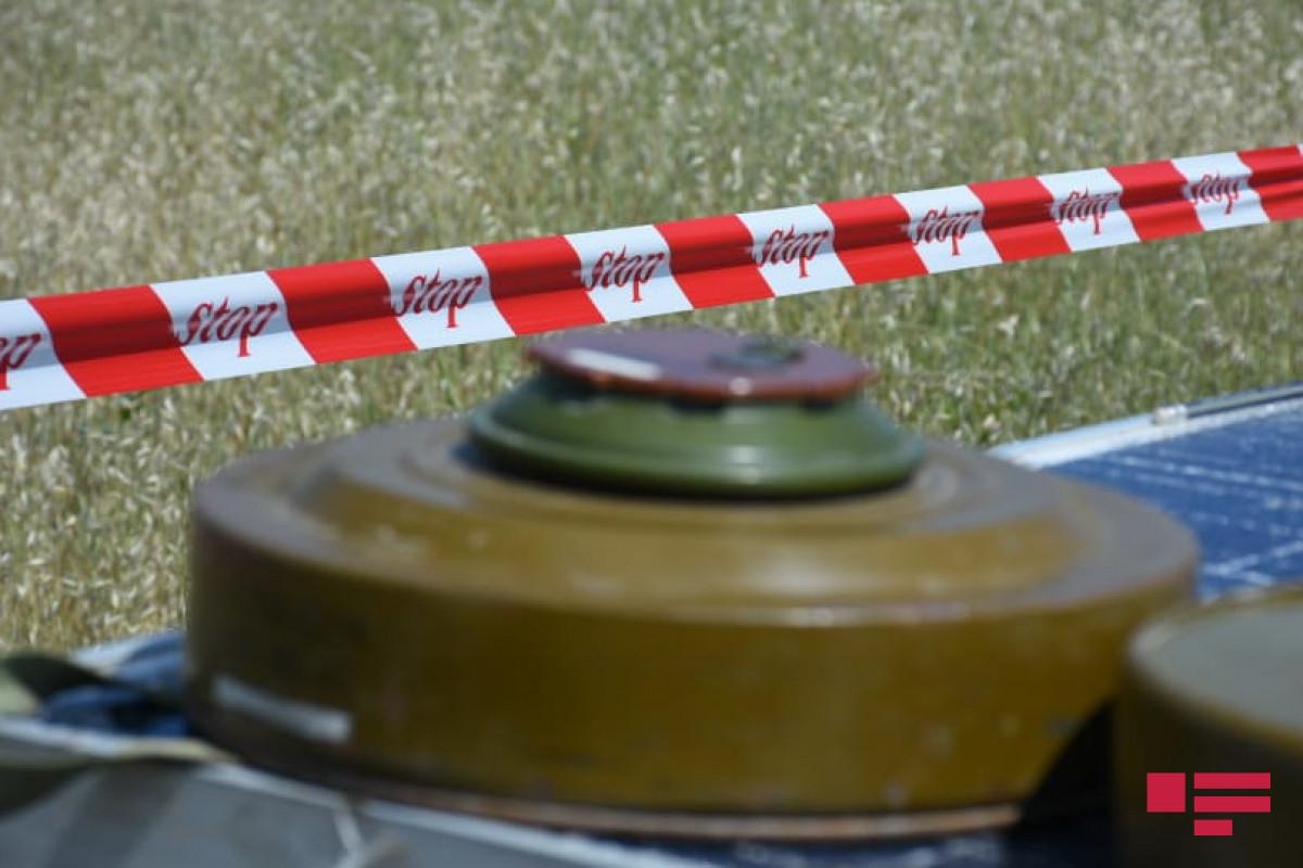 В Физули подорвался на мине сотрудник ООО «Керпю-Бина-Тикинти»