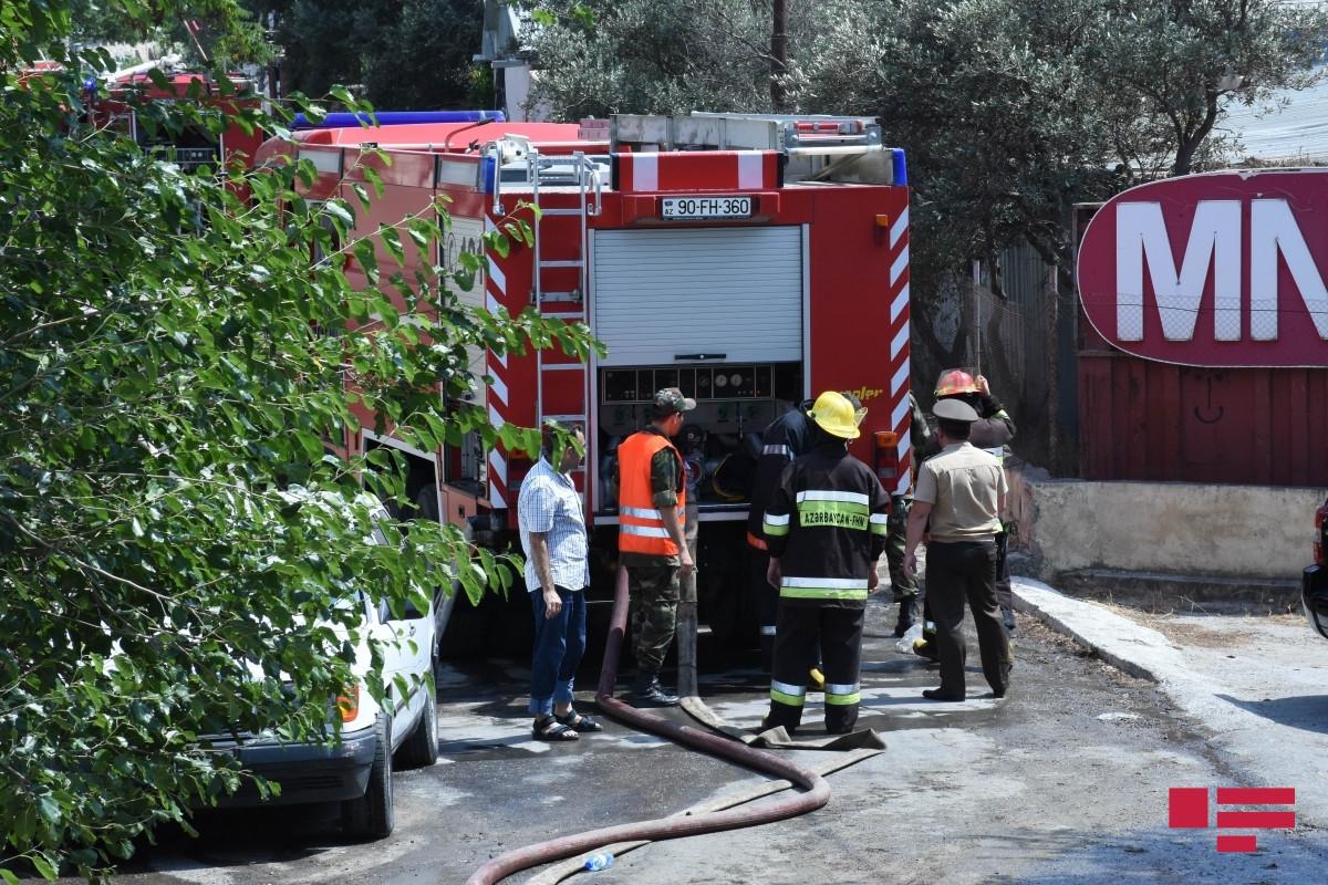 В одном из бакинских парков произошел пожар