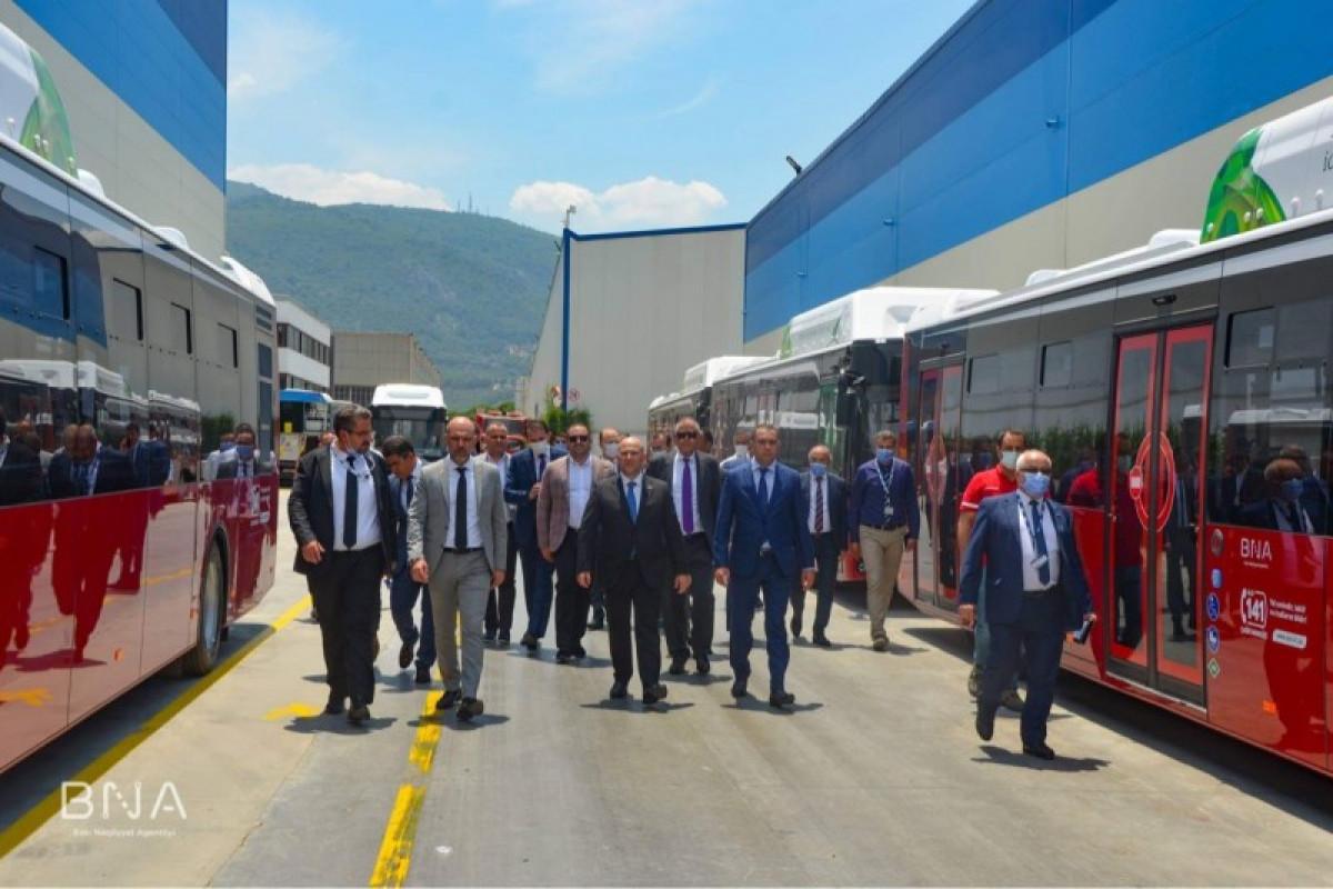 Из Турции в Баку будет доставлено еще 320 автобусов-ФОТО