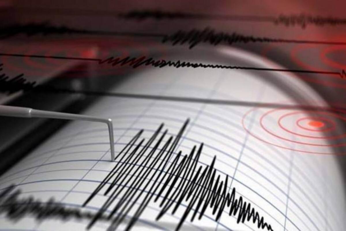5.0-magnitude quake hits Iran