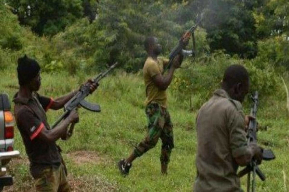Gunmen kill 222, kidnap 774 in 3 months in NW Nigerian state: official