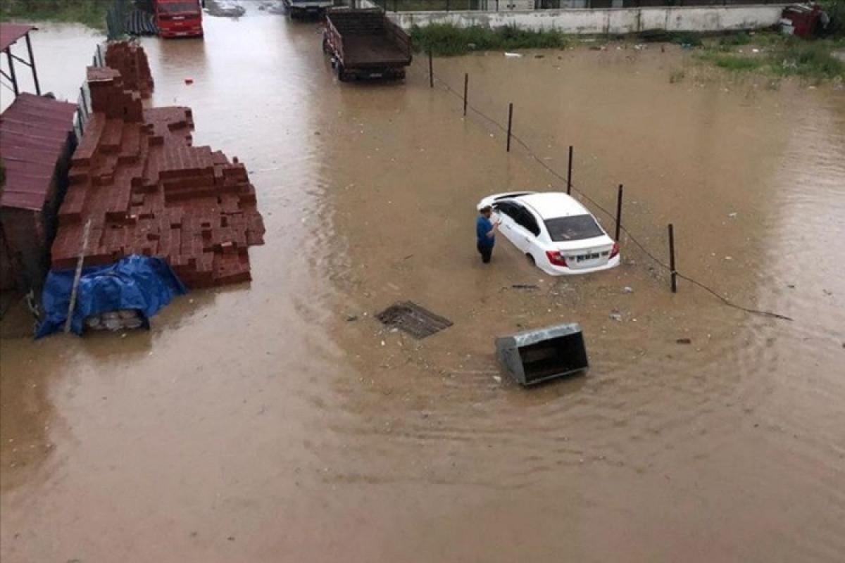 Число погибших в результате схода селевого потока в Турции достигло 7