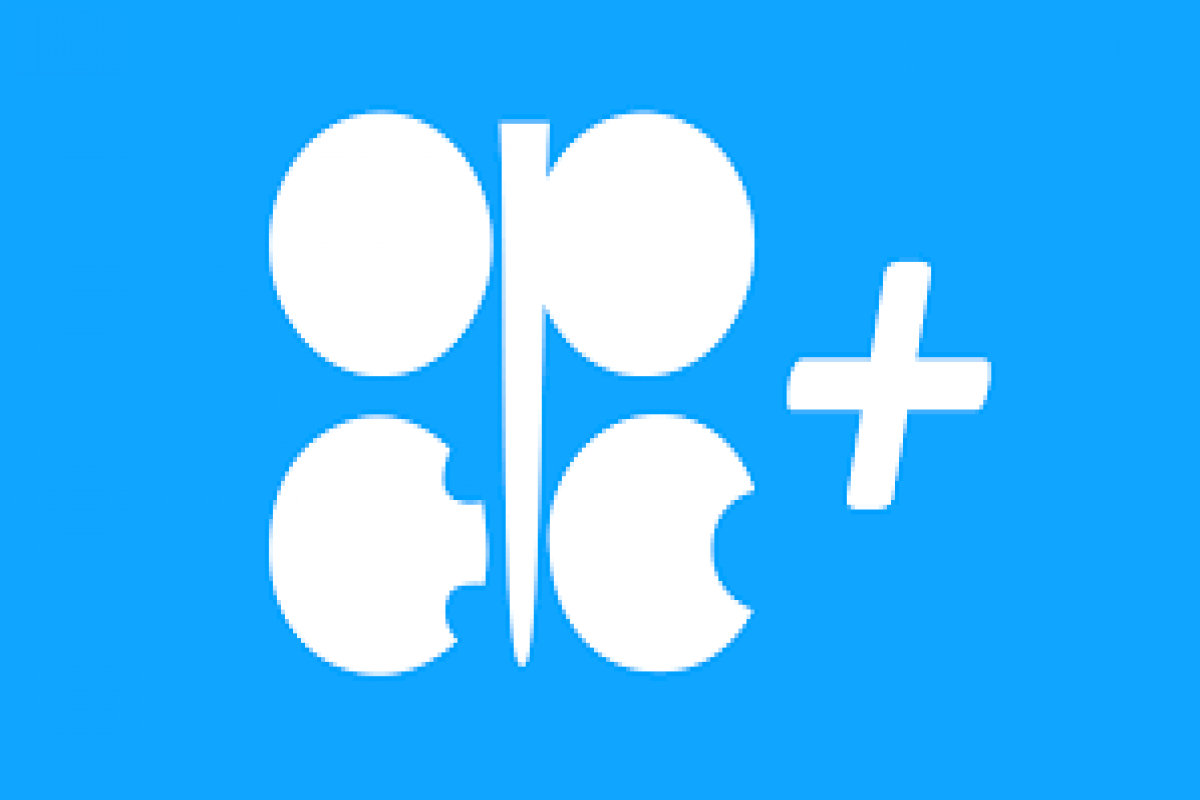 OPEC+ may hold ministerial meeting on July 18