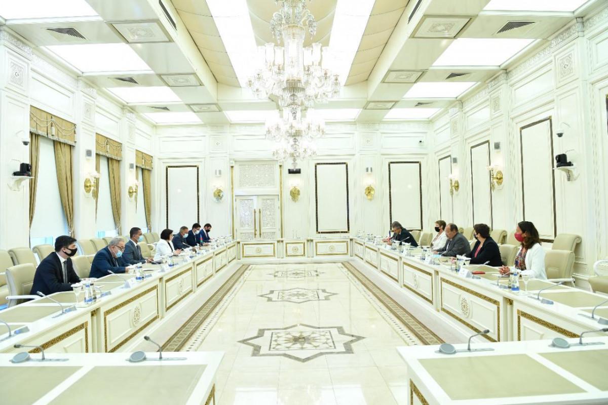 Milli Məclisin sədri Fransa Milli Assambleyasının nümayəndə heyəti ilə görüşüb