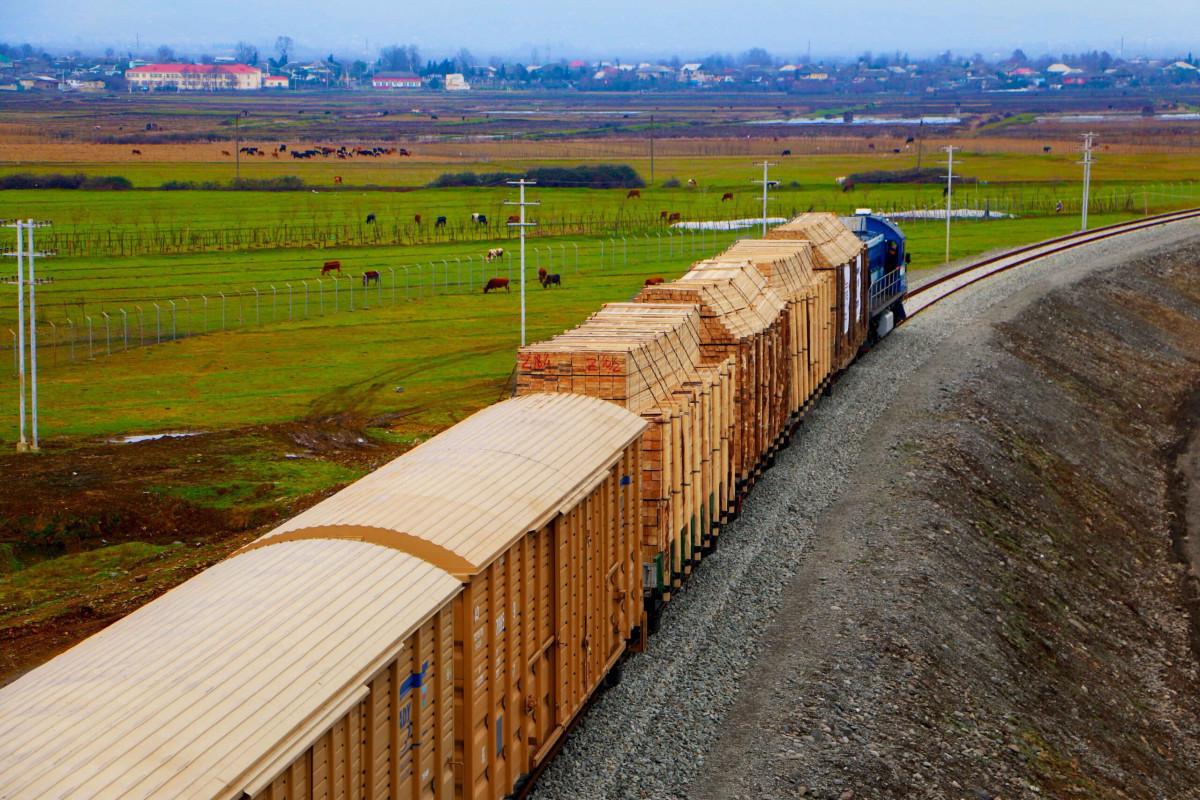 ADY Express увеличивает объем грузопотока по железной дороге Баку-Тбилиси-Карс