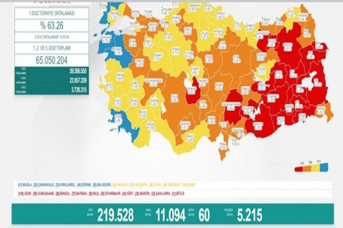 Türkiyədə bu gün koronavirusdan 60 nəfər ölüb
