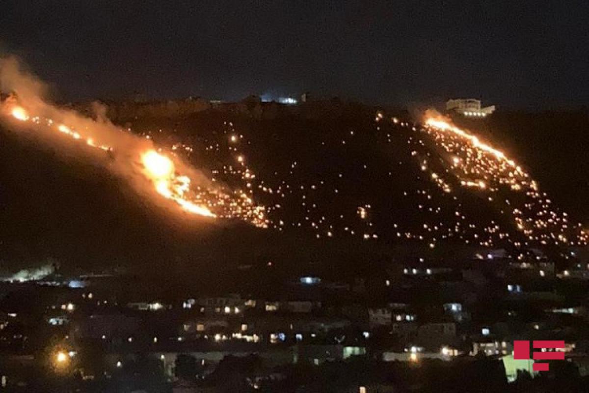 МЧС: Пожар в горной местности в Бадамдаре охватил 10 га, сгорели кусты, деревья, пластиковые водопроводные трубы