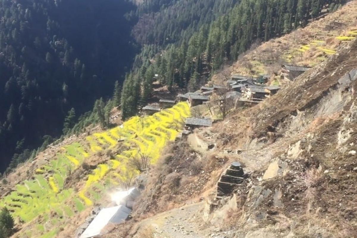 В Индии по меньшей мере 9 туристов погибли из-за обвала на горной дороге