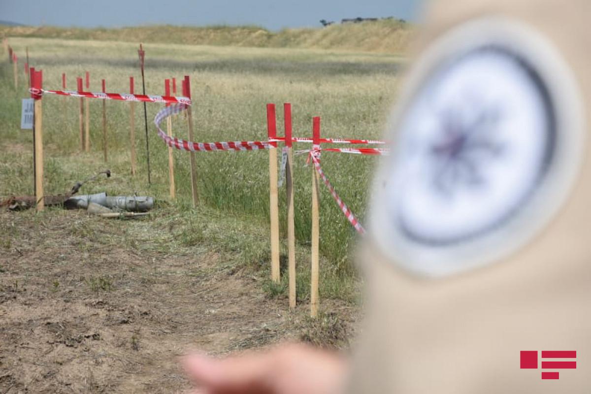 Подорвавшийся на мине сотрудник ANAMA выписан домой-ОБНОВЛЕНО -ВИДЕО