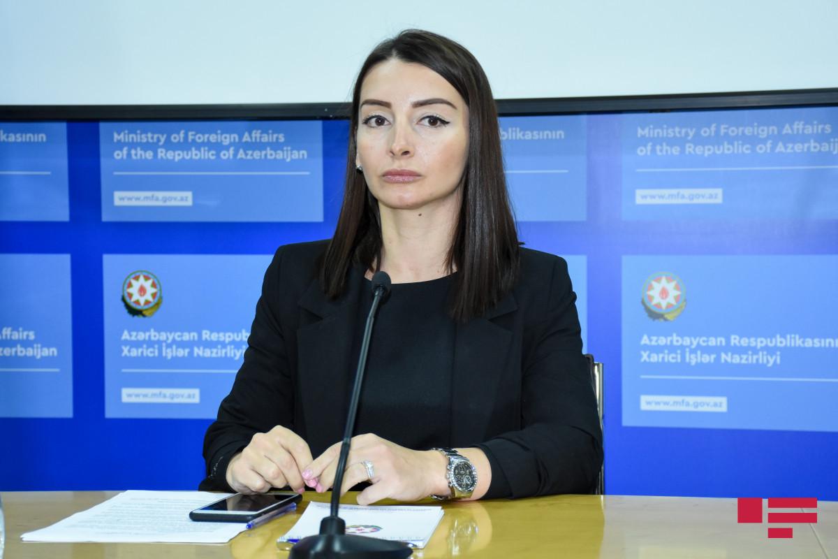 """Leyla Abdullayeva: """"Sərhəd boyu gərginliyin artmasına görə bütün məsuliyyəti Ermənistan daşıyır"""""""