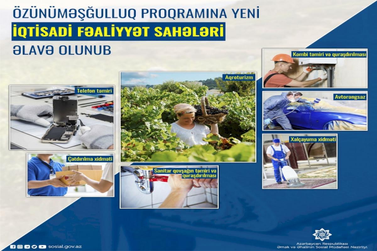 Özünüməşğulluq proqramına yeni iqtisadi fəaliyyət sahələri əlavə olunub