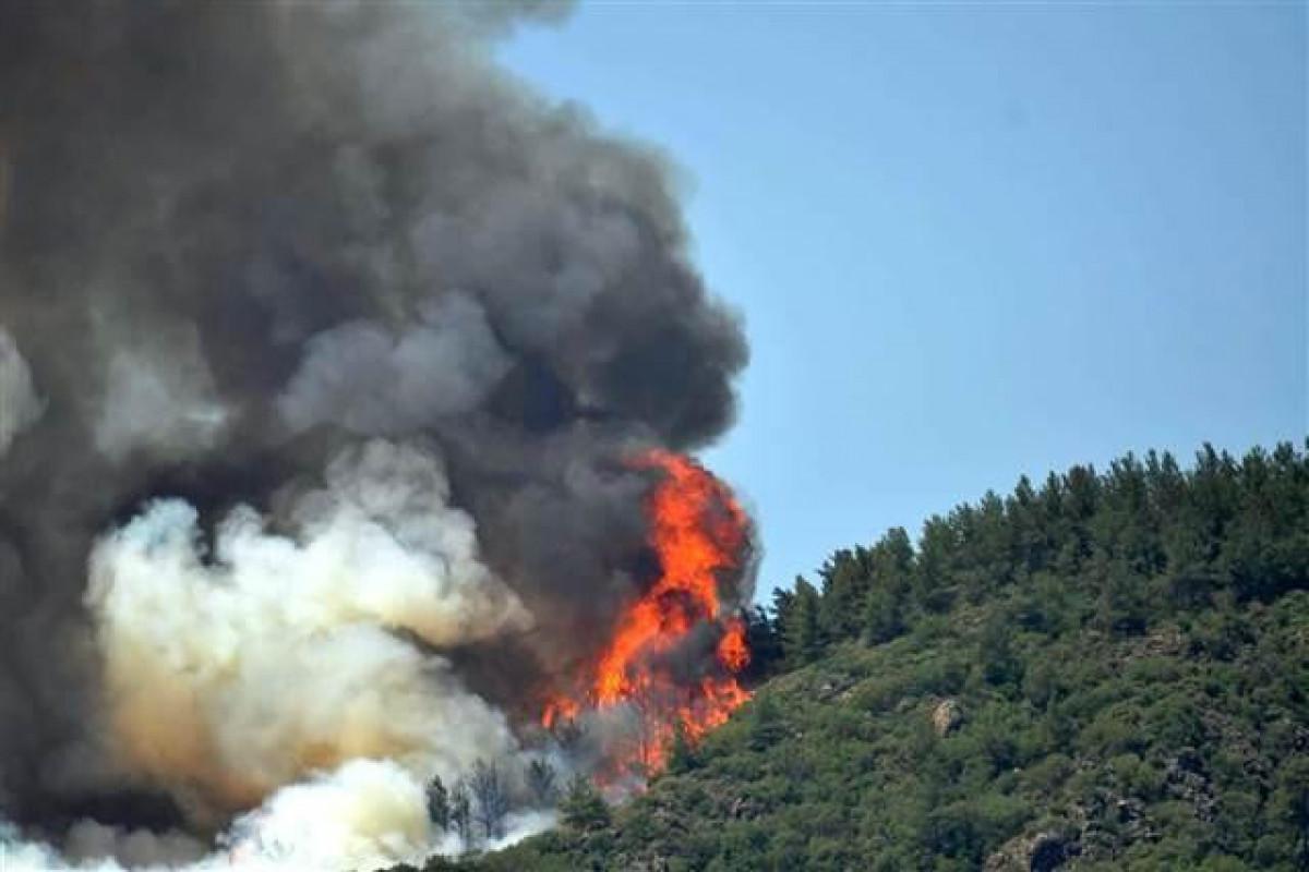 В Анталье произошел крупный лесной пожар