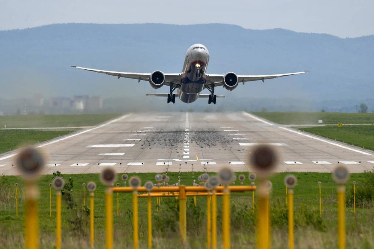 Russia considers resuming flights with Georgia, senator says