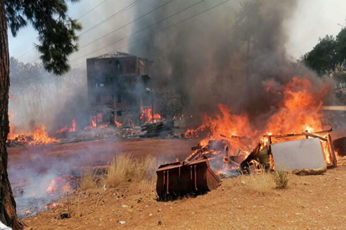 Эрдоган следит за тушением лесных пожаров в Турции