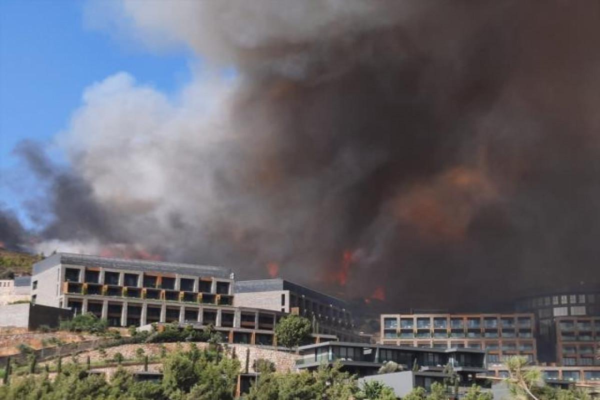 Пожар в трех провинциях Турции взят под контроль, в Бодруме и Миласе масштаб пожара расширяется