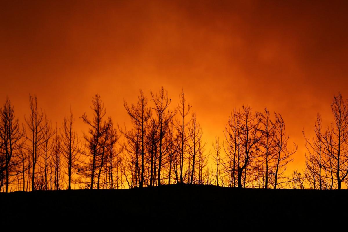 Greek FM offers condolences, help to Turkey combat wildfires