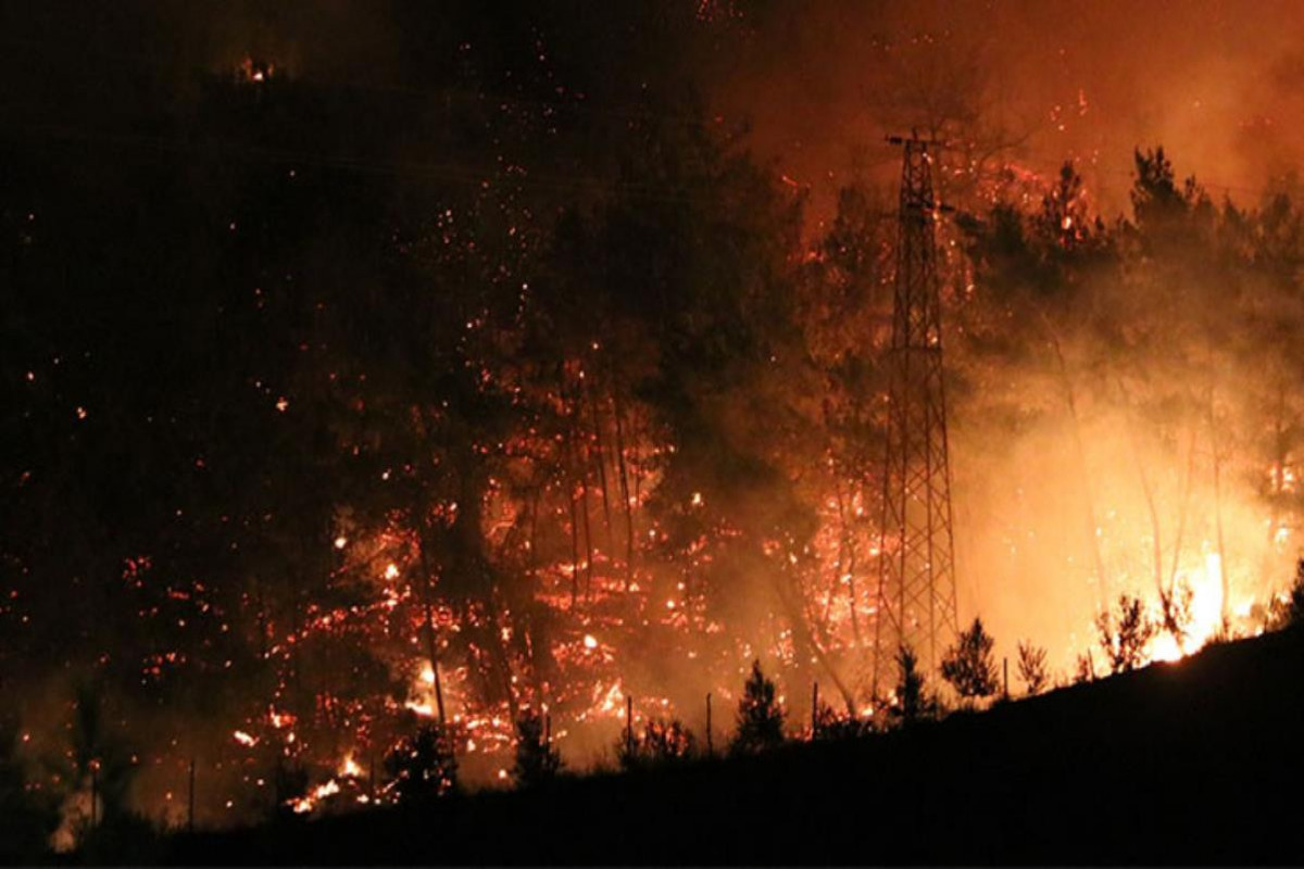 """Azerbaijani Consulate General in Turkey: """"No dead and injured among Azerbaijanis in forest fire in Turkey"""""""