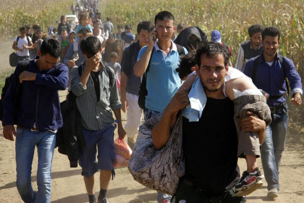США возобновили ускоренную депортацию нелегальных иммигрантов в Центральную Америку