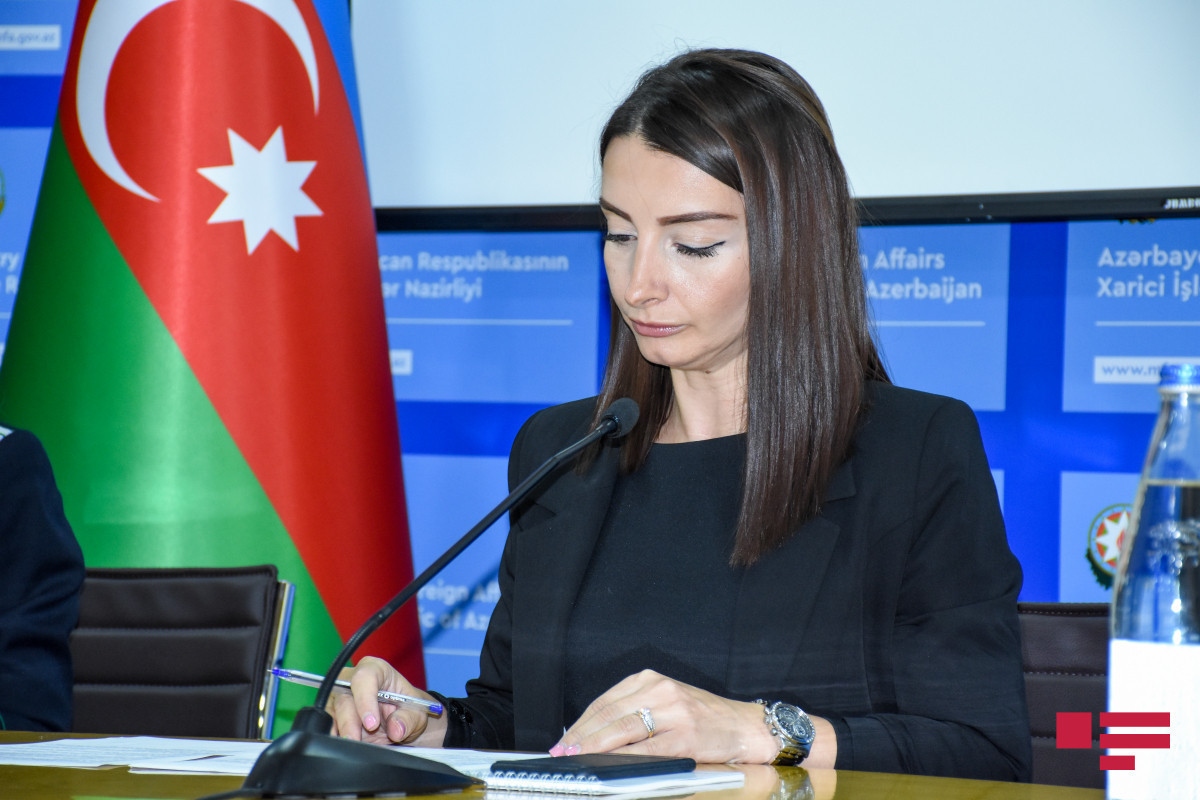 """Leyla Abdullayeva: """"Armenia does not want to accept that Azerbaijan has restored its territorial integrity within its international borders"""""""