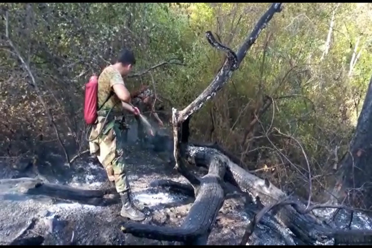 Turkish and Azerbaijani firefighters together involved in extinguishing the fire