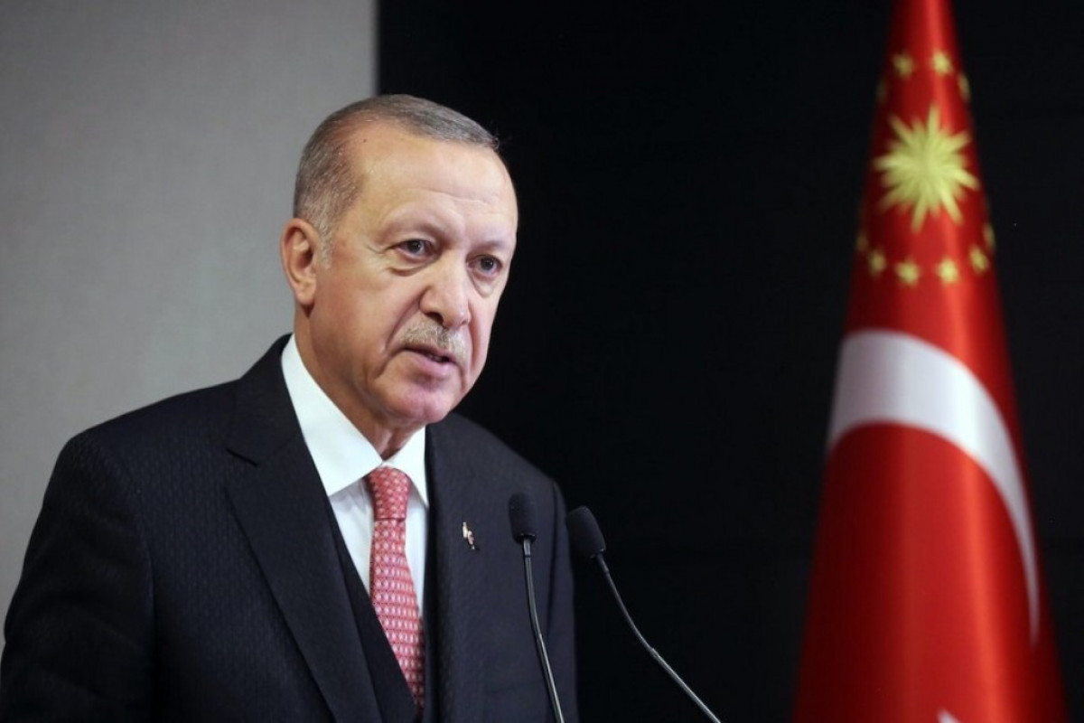 """Erdogan: """"Fire and rescue team sent from Azerbaijan supports every area where fires occur"""""""